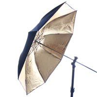 Quenox Collapsible Studio Umbrella 100cm gold/black - Studio Flash & Flashgun