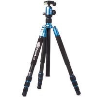 Colorlux BILORA ColorLux Aluminium Tripod Blue with Ball Head & Monopod